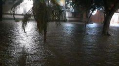 El temporal afectó a gran parte de Chaco, con abundantes lluvias y fuertes vientos
